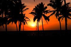 DSC_0414 (Abhimanyu.Ghosh) Tags: sea sun india beach nikon goa d40 earthasia