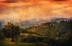Tuscan Morning (Philipp Klinger Photography) Tags: morning italien light shadow sky italy orange house mist color tree texture fog clouds nikon san europa europe italia view gimignano hill olive sienna vivid hills valley tuscany poppy poppies vista cypress siena sangimignano toscana philipp toskana poggibonsi klinger casaglia d700 dcdead vanagram