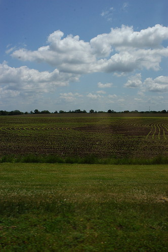 fields of Iowa