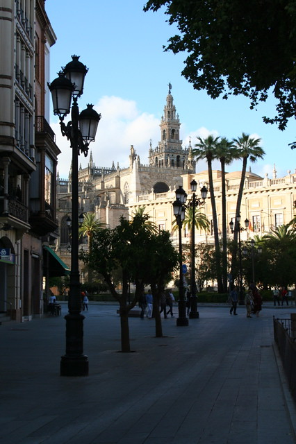 Dianas- Spain 2010 396