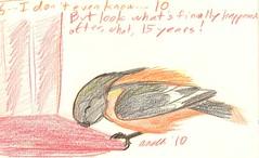 6.6.10. Oriole at MY Hummingbird Feeder!