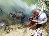 P1040772 (raafjes) Tags: bali turtleisland pulauserangan