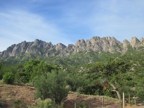 The Needles of the Organ Mountains