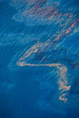 tedx-oil-spill-9810