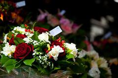 Paris - Flowers in the Latin Quarter 2