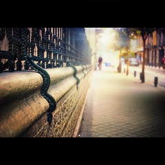 Snakes (Dr Cullen) Tags: madrid light fence nikon bokeh snake 35mmf18 explored drcullen explore212 d300s nikond300s fencedfriday palaciodelongoria