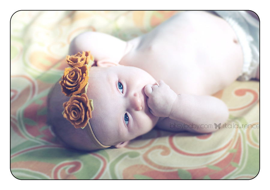 new baby photographer annapolis studio
