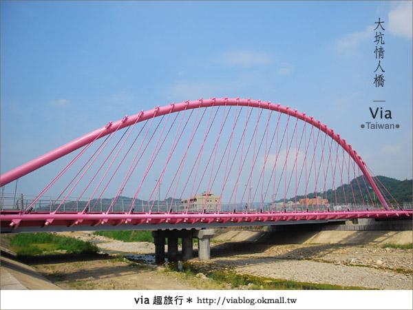 【大坑情人橋】新的台中約會景點~浪漫粉紅色情人橋20