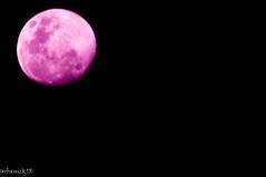 Pink Moon (UrbanickJR) Tags: dailyshoot thedailyshoot ds340