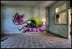 Little Hospital of Horrors - Songe (Romany WG) Tags: b plant france abandoned shop hospital graffiti little deco normandy horrors urbex songe of
