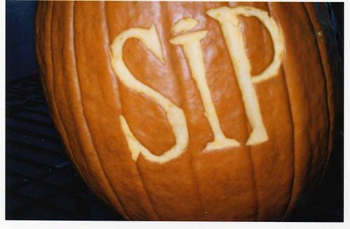 Sip Lounge Pumpkin