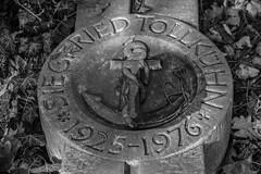 Tollkühn (michael_hamburg69) Tags: braunschweig germany deutschland cemetery friedhof gottesacker hauptfriedhof zentralfriedhof centralfriedhof helmstedterstrasse siegfriedtollkühn tollkühn 19251976 grave grabstein anker seil tau rope anchor