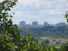 Harare Skyline (jnwakeling) Tags: harare zimbabwe city citycentre cityskyline suburbs trees meyrickpark viewfrommeyrickpark cityofharare buildings cloudyday