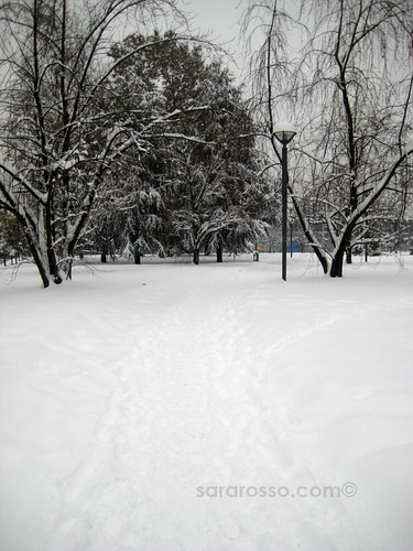 The path to the office, Milan, Italy, December 22, 2009
