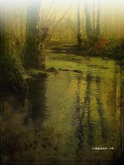 Atardecer en el rio ...  Sunset at the river ... (tan.solo_milenia .) Tags: sensational wonderland soe idream bej topseven anawesomeshot concordians thesuperbmasterpiece vosplusbellesphotos yourwonderland sailsevenseas thebestofobjectiveart peregrino27newvision