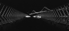 (ytlyons) Tags: sanfrancisco leica longexposure bridge blackandwhite bw delete10 night delete9 delete5 delete2 blackwhite nightshot delete6 delete7 trix delete8 delete3 delete delete4 save baybridge embarcadero ferrybuilding leicam3 sanfrancisconight bridgenight deletedbydeletemeuncensored