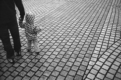 (Laurent Filoche) Tags: taiwan streetphotography taipei leicam7 chiangkaishekmemorial notcropped fujineopan4001600 bonzography voigtlnder35mmf14