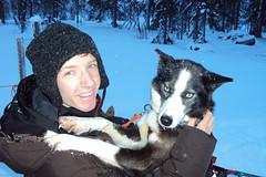 Huskies are lovely