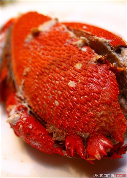 spaner-crab
