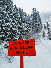 Mount Rainier (Clement.Sim) Tags: winter snow cold tree sign mountrainier avalanche canong10