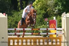 Campionati Regionali - Cervia Le Siepi (L *) Tags: show horse canon cheval jump jumping cavallo pferd eos300d gara cervia regionali concorso campionati saltoostacoli lesiepi