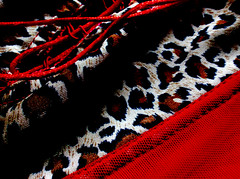 Pizzi (cartabianka) Tags: abstract art leopardo arte artistic photos hell rights astratto rosso luce hypothetical pizzo chrisisaak photografy pizzi merletti merletto wickedgame leopardato