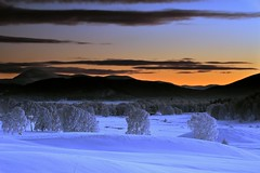 Before Darkness, Serenity - Cairngorms, Scotland (cedric_g) Tags: winter sunset orange cold landscape scotland highlands nikon frost dusk paysage d3 cairngorms ecosse theunforgettablepictures nikond3 tup2
