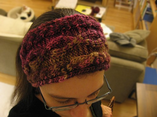 2010-01-26_headband.jpg