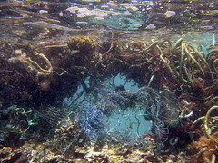 Marine Debris is a Global Problem