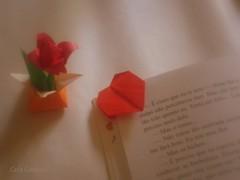 presente (Carla Cordeiro) Tags: paper origami livro papel paperfolding tulipa  mensagem dobradura vidasimples teabagfolding