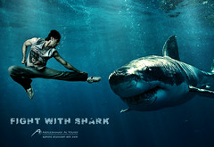 FIGHT with SHARK !!! :S (Abdulrahman Alyousef [ @alyouseff ]) Tags: shark photo fight nikon with s    d80  abdulrahman        alyousef
