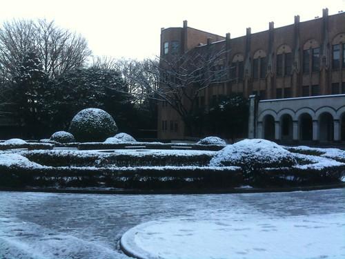 snow day at Tokyo univ Feb 2010