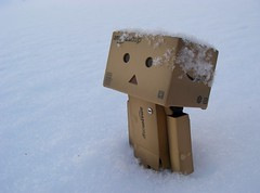 Snowflakes are falling on my head (Yoshi Gizmo) Tags: toy japanese figure collectable danbo revoltech danboard