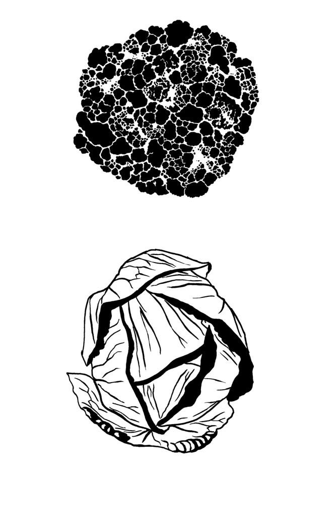 caulcabbage
