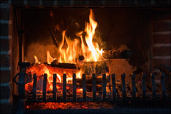 warmth (heavenuphere) Tags: wood hot fire fireplace warmth flame heat 1750mm