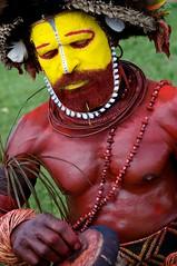 Huli Warrior (Dave Schreier) Tags: new red man yellow festival dave beard guinea mt png papua hagen huli schreier wwwdlsimagescom