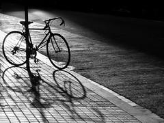 parking (piriskoskis.) Tags: barcelona street city light shadow urban bw bike bicycle pavement bcn bn zs1 tz6