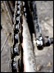portrait of a cycle chain (On The Abbey Road) Tags: old chain mumbai mws vasaifort cyclerust