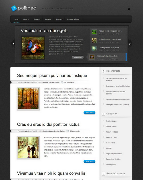 Polished   ElegantThemes WordPress Theme