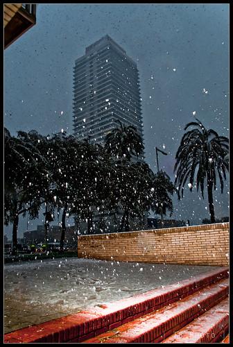 Torre Mapfre i neu