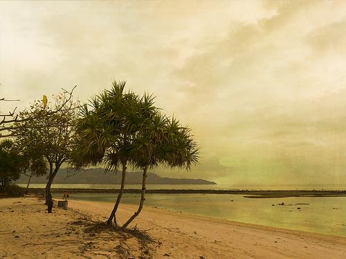 Gili Meno Beach