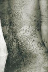 naturebody (Nuria Carballo) Tags: flowers blackandwhite flores blancoynegro back body galicia espalda cuerpo desnudo