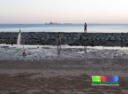 Setting up driftnets on Tanah Merah