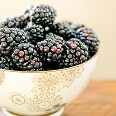 saturday mornin' blackberries (jamie {74}) Tags: stilllife macro fruit nikkor blackberries nikond40 nikkor60mmf28gmicro lr2editssquarecroppedpresetjadesharpenclarity flickrfriendsweeklythemestilllife