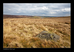 Neolithic carved rock on Middleton Moor (CR448) (Mike Short of Baildon) Tags: landscape yorkshire moor ilkley rockart bronzeage neolithic moorland middleton carvedrock langbar middletonmoor