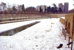 Parque de la Taconera, Pamplona (Rufino Lasaosa) Tags: parque espaa gris spain rboles nieve paseo estanque invierno fro espagne febrero jardines pamplona navarre taconera 2010 patos navarra pampelune murallas humedad defensas fosos