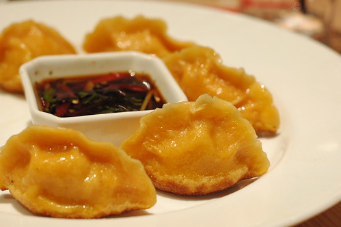 Close up Pan fried dumplings