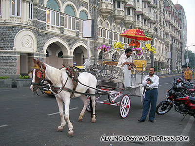 One of the many horse carriages circling the Taj Hotel, targeted at tourists