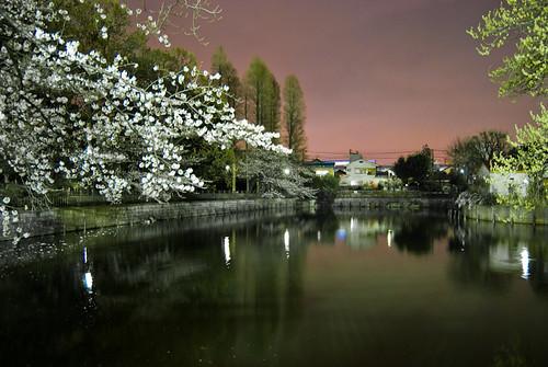 himonya pond_8015