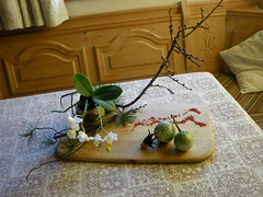 Morimono, risveglio degli insetti (Ikebana Marisa) Tags: origami ikebana scarabeo morimono oharaschool scuolaohara